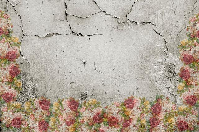 praskliny ve zdi